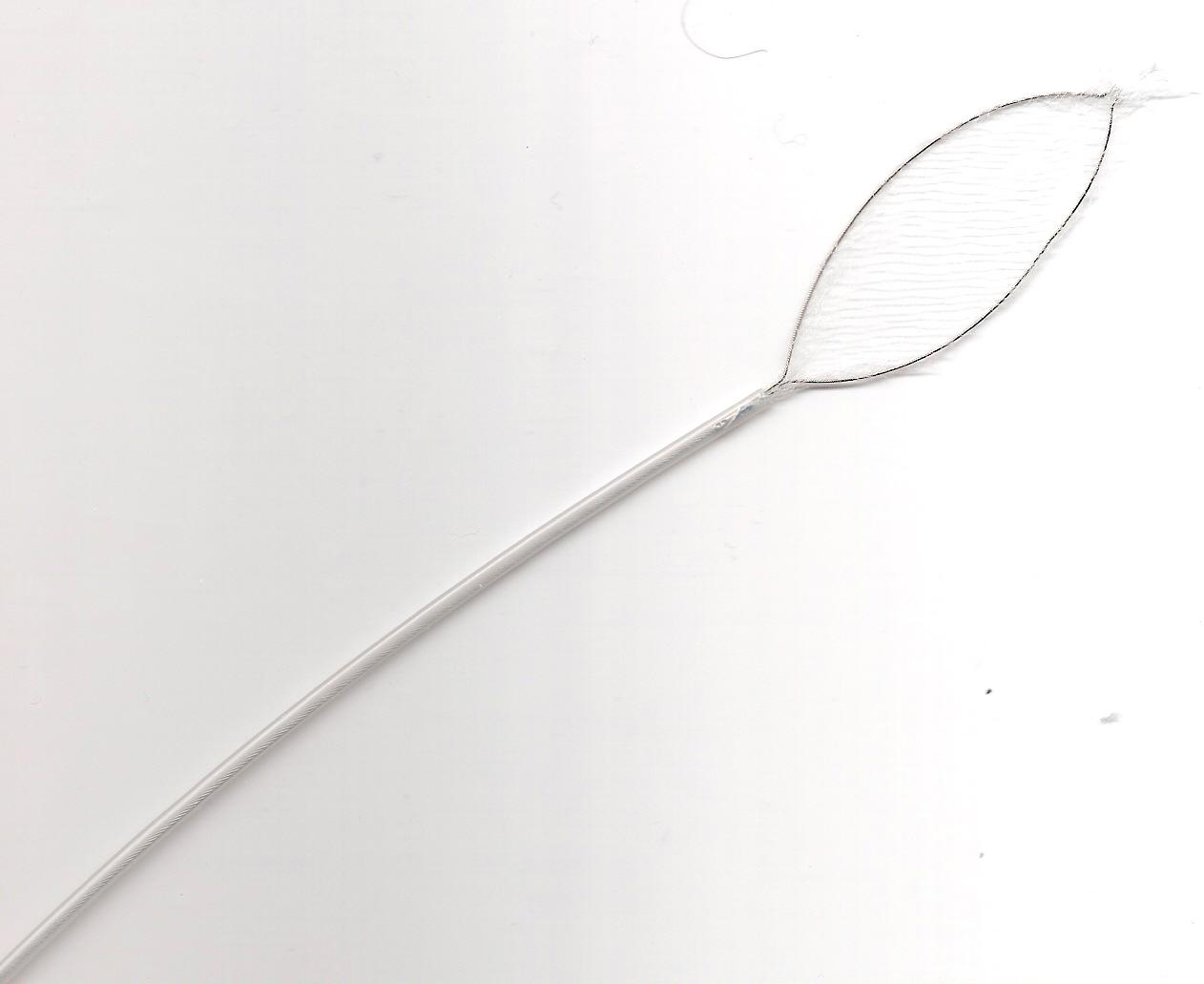 Prostate Biopsy Forceps Market in 360MarketUpdates.com