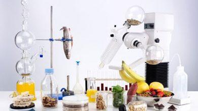 Global Food Nanotechnology Market