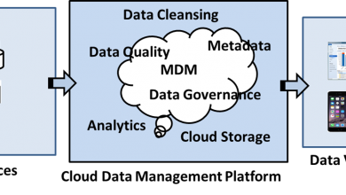 Cloud Master Data Management (Cloud MDM) Market