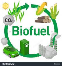 Biofuels And Biodiesel Market
